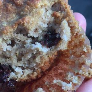 Zucchini- Chocolate Almond Flour Muffins